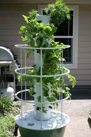 Backyard-Vertical-Aeroponic-Gardening-Technique